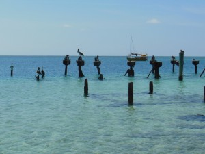Speedwell anchored in the Dry Tortugas