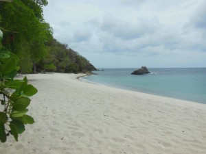 Anse le Roche, where turtles come to lay their eggs