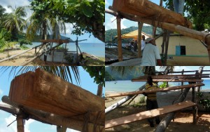 Traditional log sawing demonstration