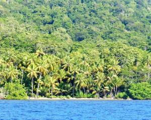 Monos Island Coconut Beach