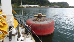 Big Mooring buoy in Gatun Lake
