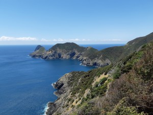 The view towards Cape Brett